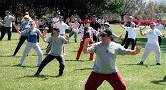 A large group doing Tai Chi in the park