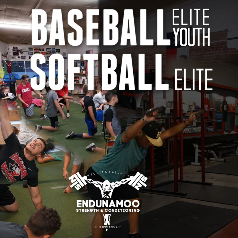 NEW PROGRAM ALERT: Elite Baseball & Softball in November Image