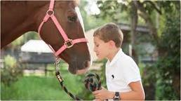 New Day Rate For Happy Trails Camp At Kierson Farm! Image