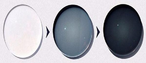 World Eyeglasses Optical Lenses